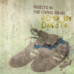 Insects in the Living Room Dakota Remix